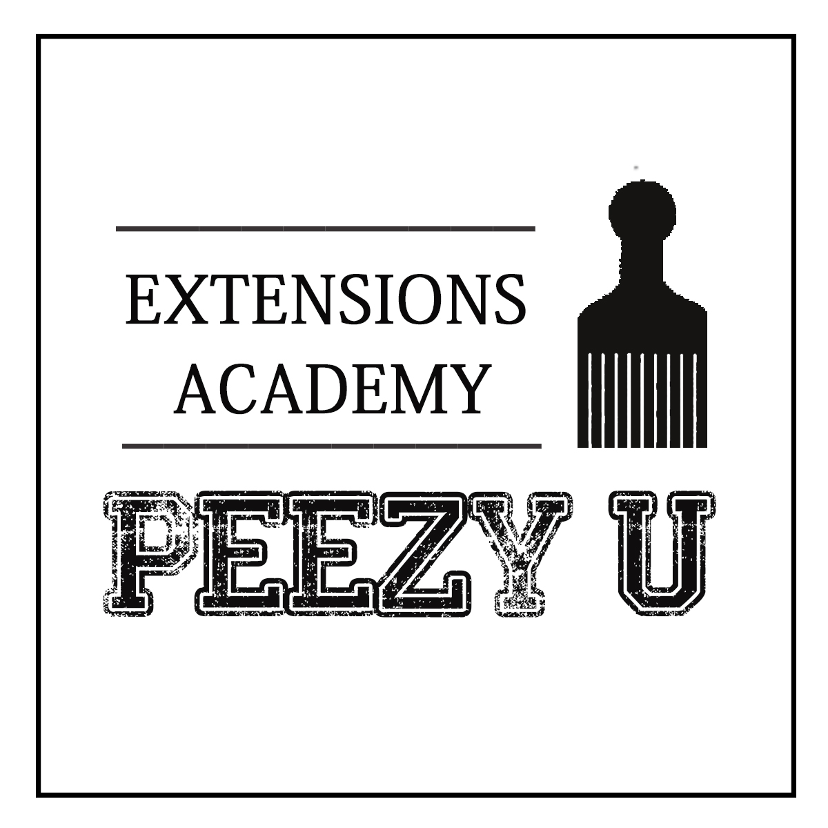 academy of extensions copy